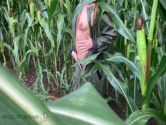 Nackt im maisfeld